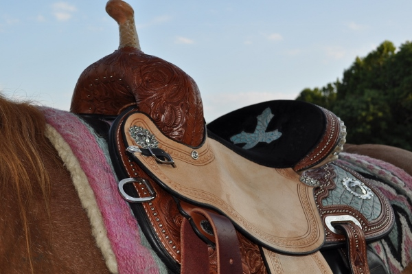 kelly kaminski barrel saddle