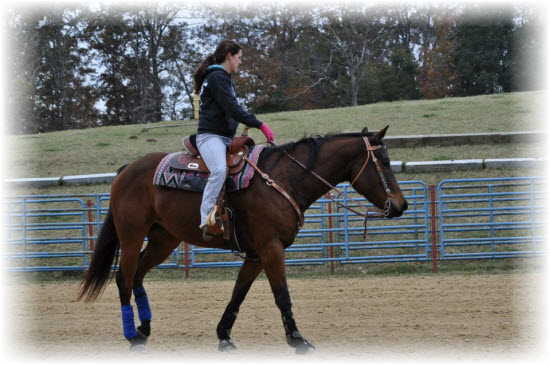 Riding Gracie