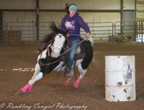 barrel racing paint horse
