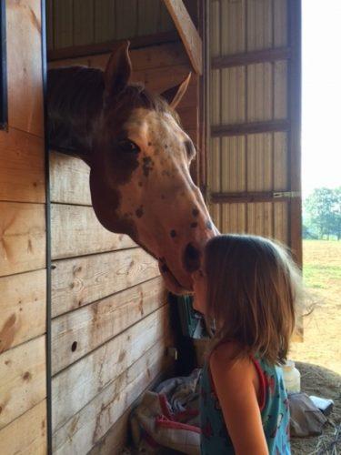 horse kisses girl