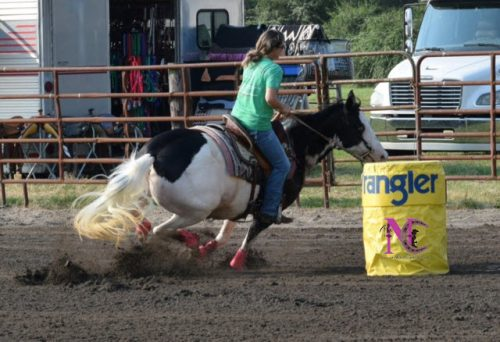 barrel-racing-paint-horse