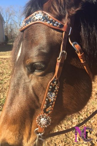 hand painted headstall