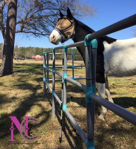 set up horse panels 2