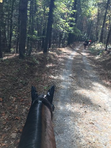 Trail Riding at Dupont Forest