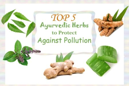 Top 5 Ayurvedic Herbs to Protect Against Pollution