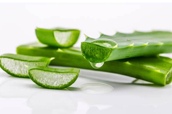 aloe vera juice to eliminate the toxins from the body