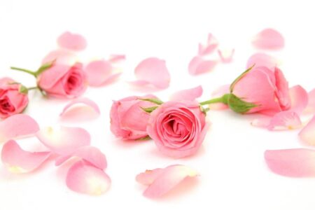 Top 5 Benefits of Rose Water for Skin