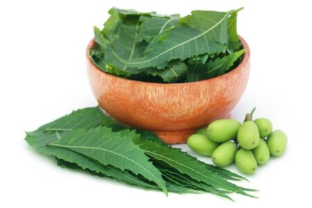 Top 5 Neem Shampoos to Get Rid Of Dandruff and Itchy Scalp