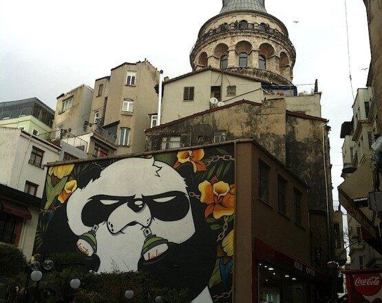 Angry Panda in Galata