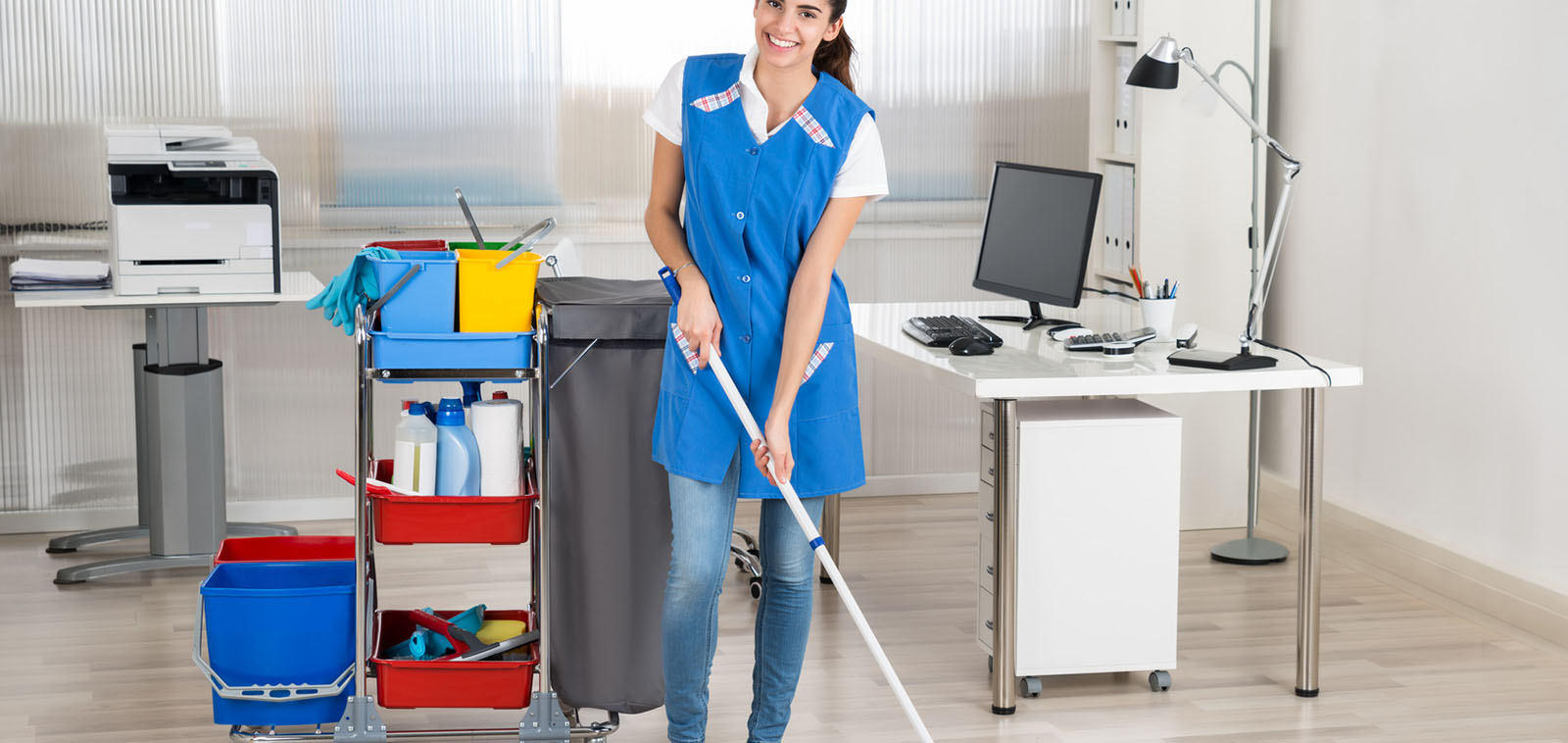Professional Cleaners Services Ealing