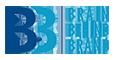 B3 Brain Behind Brand