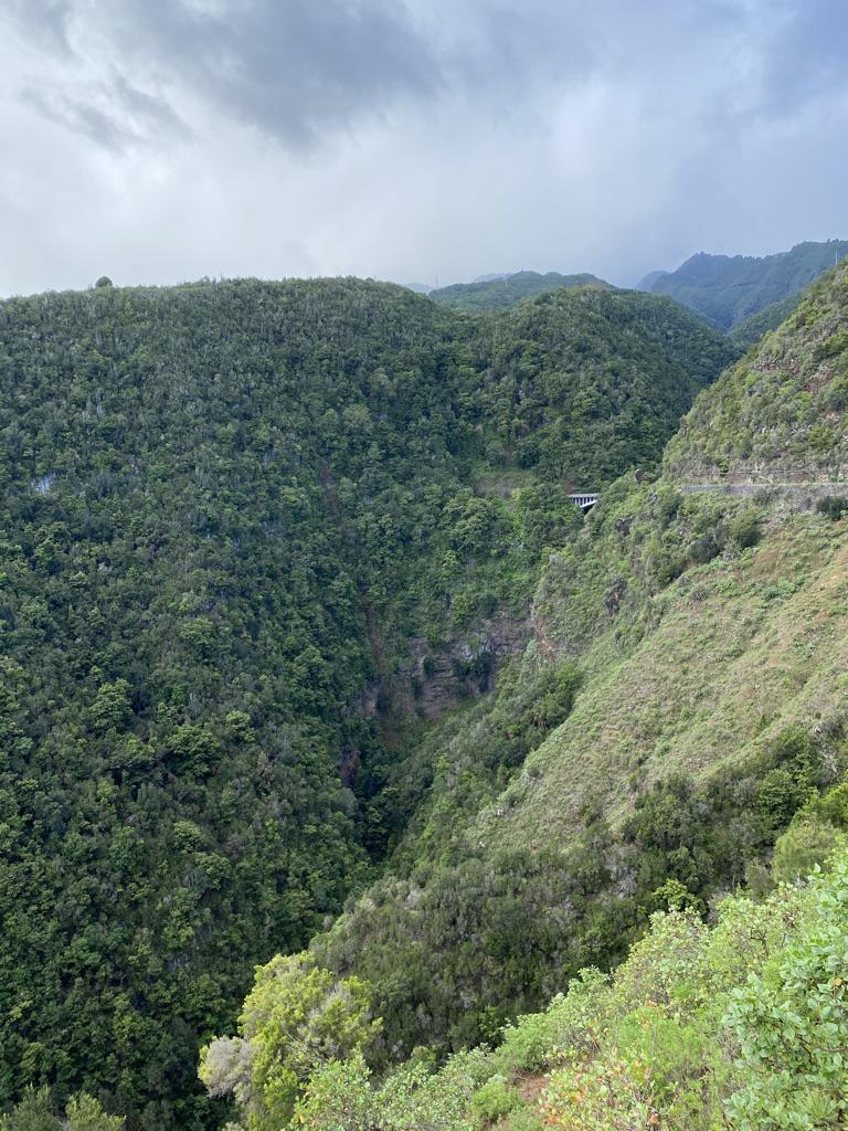 Cubo de la Galga, La Palma