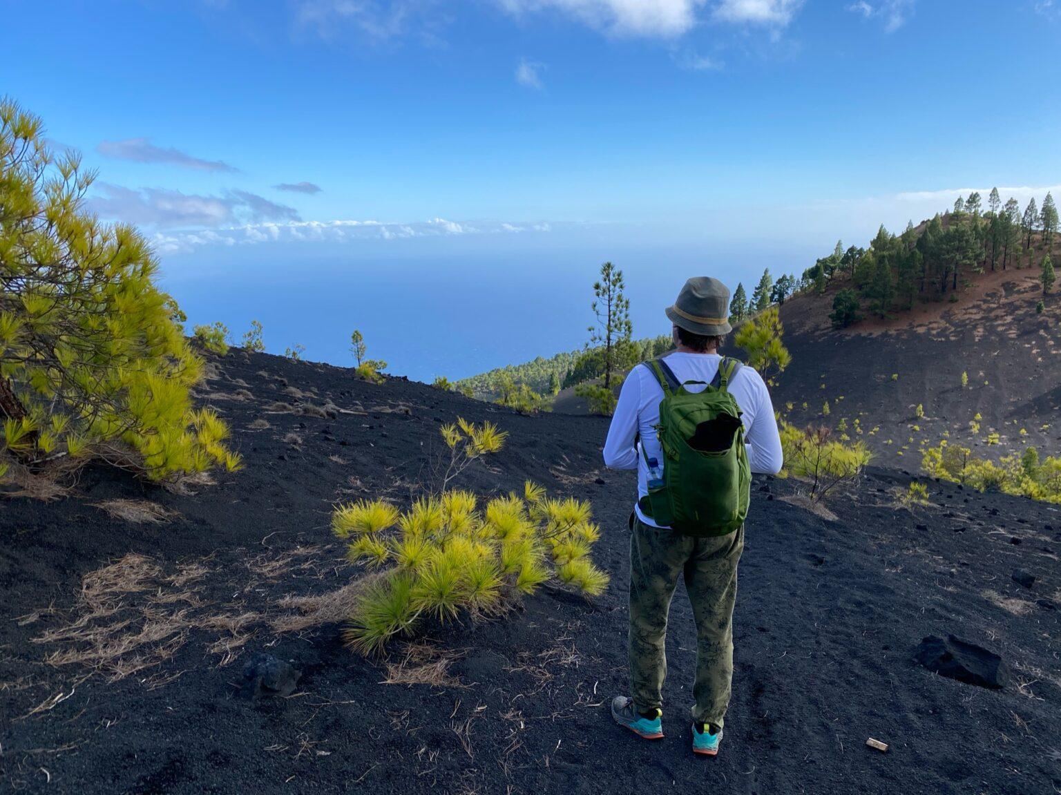 Contrasterend groen op de zwarte vulkanische aarde.