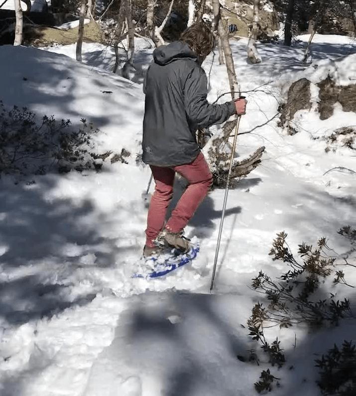 Raquetas de neive