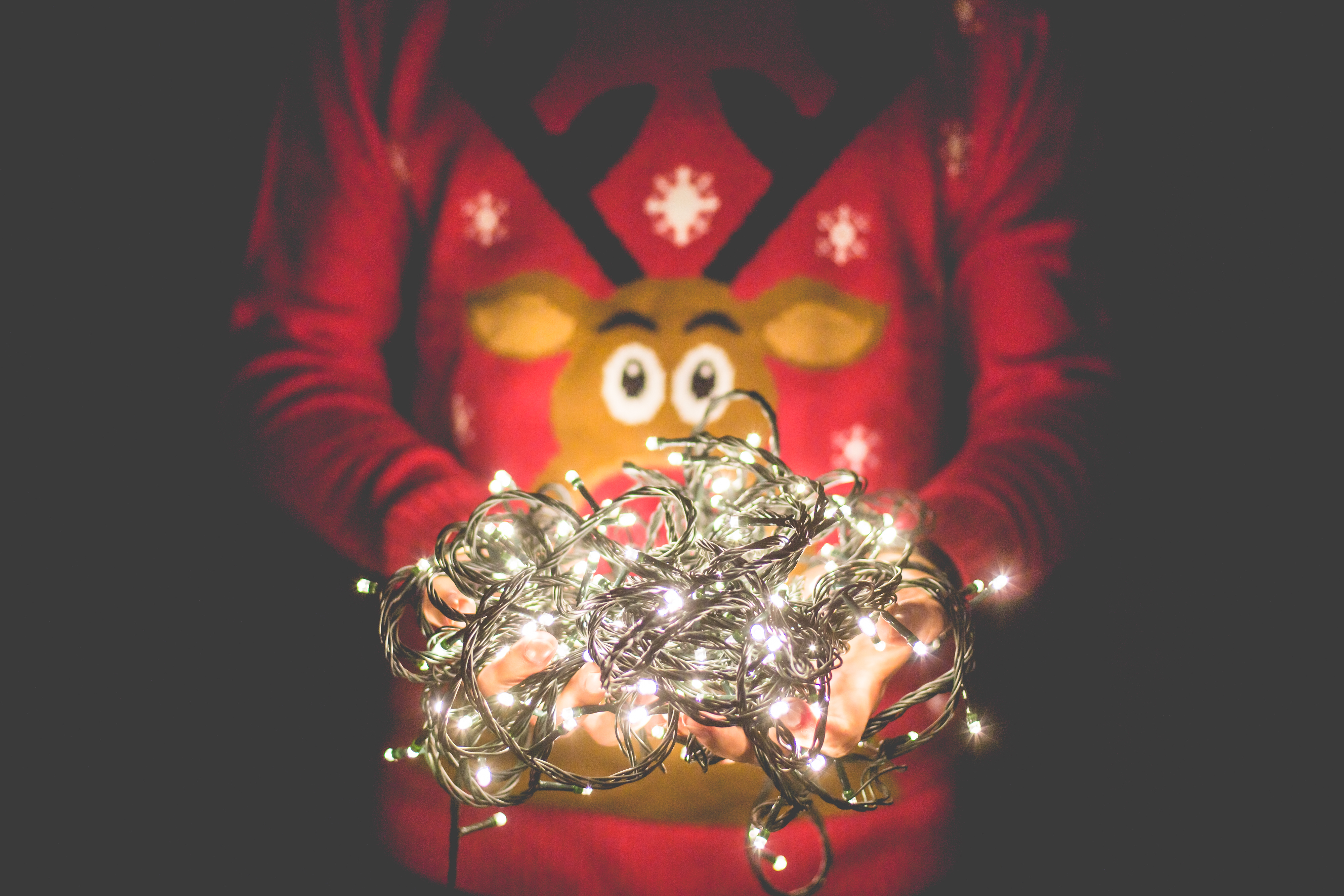 person in rudolph jumper holding a ball of christmas lights