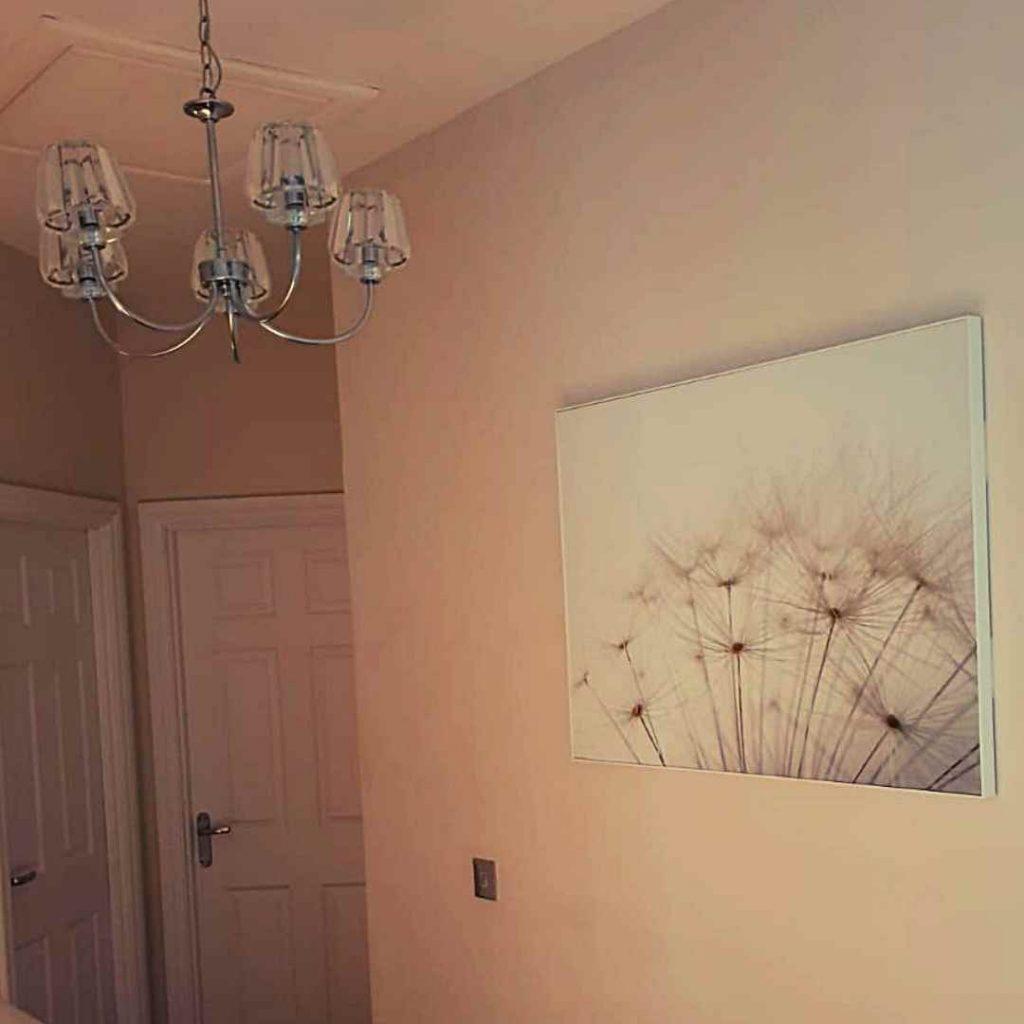 dandelion print on wall