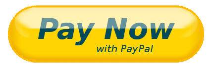 Pay-Now-With-PayPal
