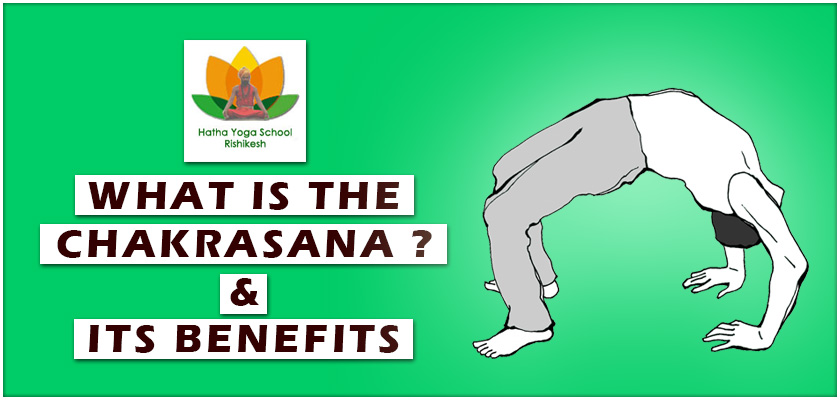 What-is-the-Chakrasana-and-its-benefits