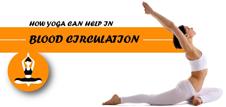 How yoga can help in Blood circulation