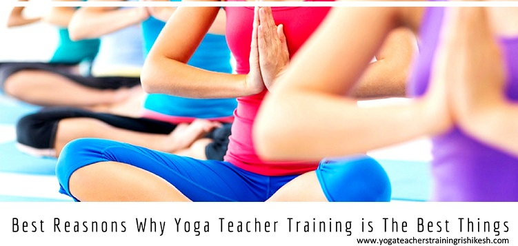 Best Reasnons Why Yoga Teacher Training is The Best Things