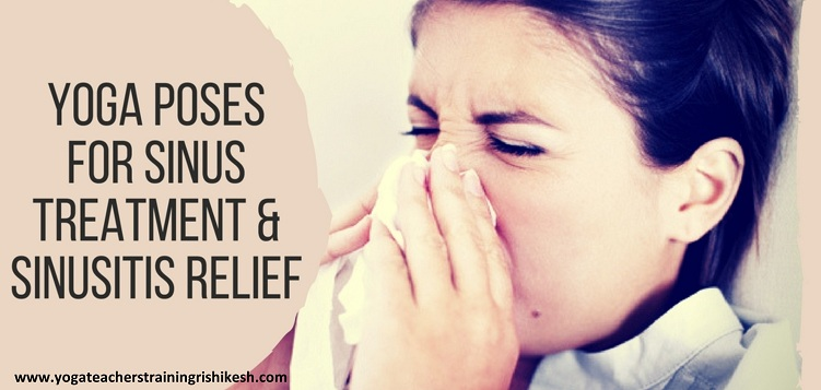 Yoga Poses for Sinus Treatment and Sinusitis Relief