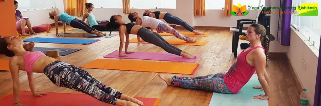 Yoga Teacher Training in Rishikesh | Yoga ttc in Rishikesh