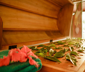 herbal-steam