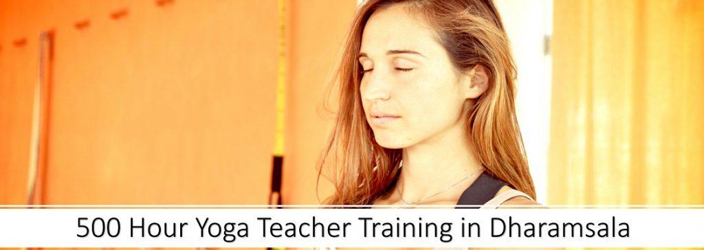 500 hour yoga teacher training in dharamsala