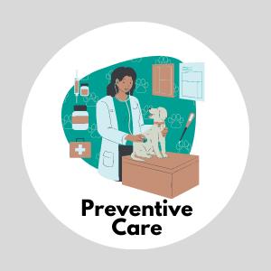Preventive Care (Mobile View)