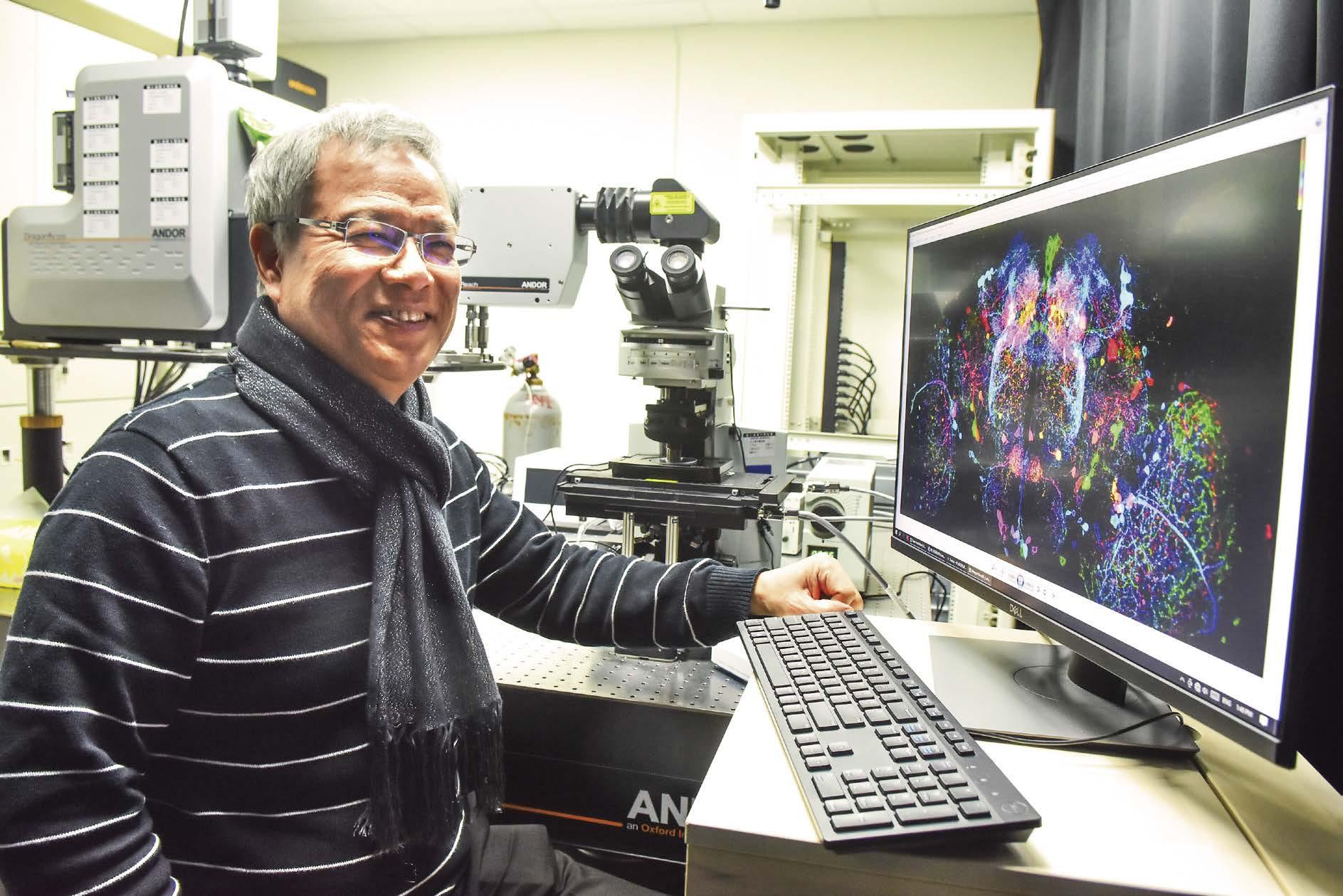科學人-透視大腦經圖譜