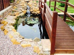 Pond design with bridge going over