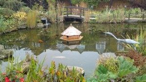 Large pond, with water features and well maintained plants
