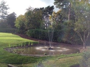 Large water fountain in a pond