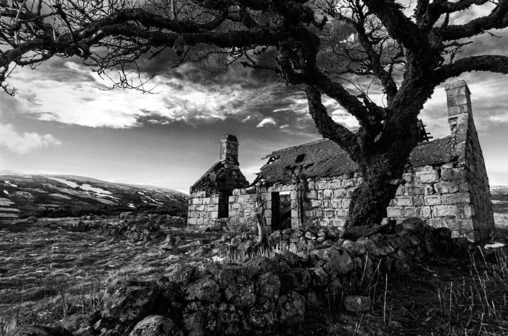 18 - The Abandoned Home.jpg