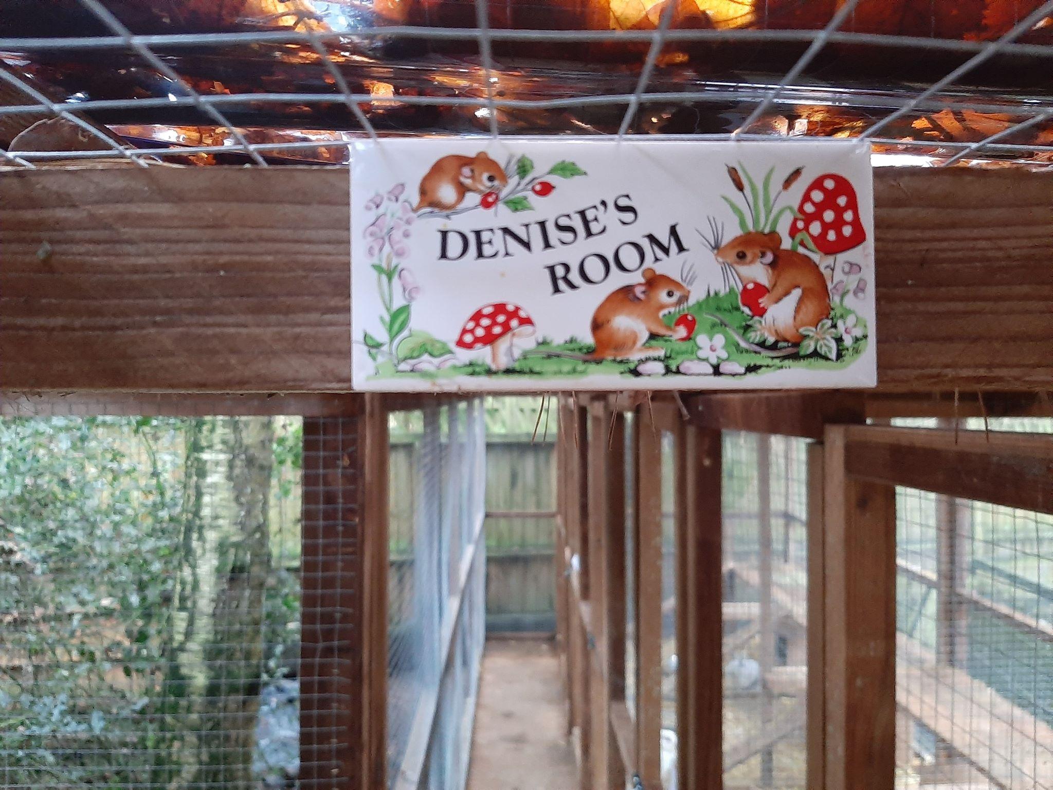 Denise's Room