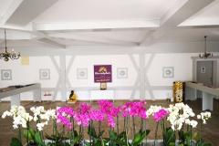 Saal-Orchideen