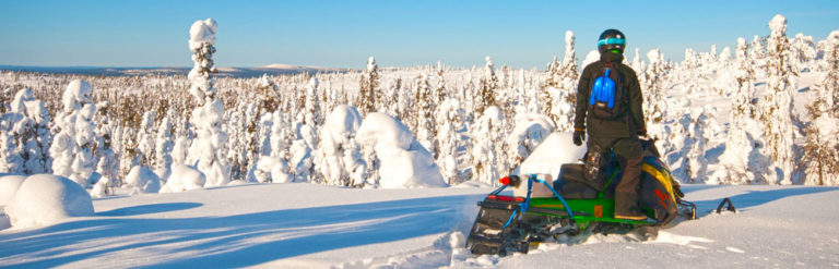 Snowmobile safaris...