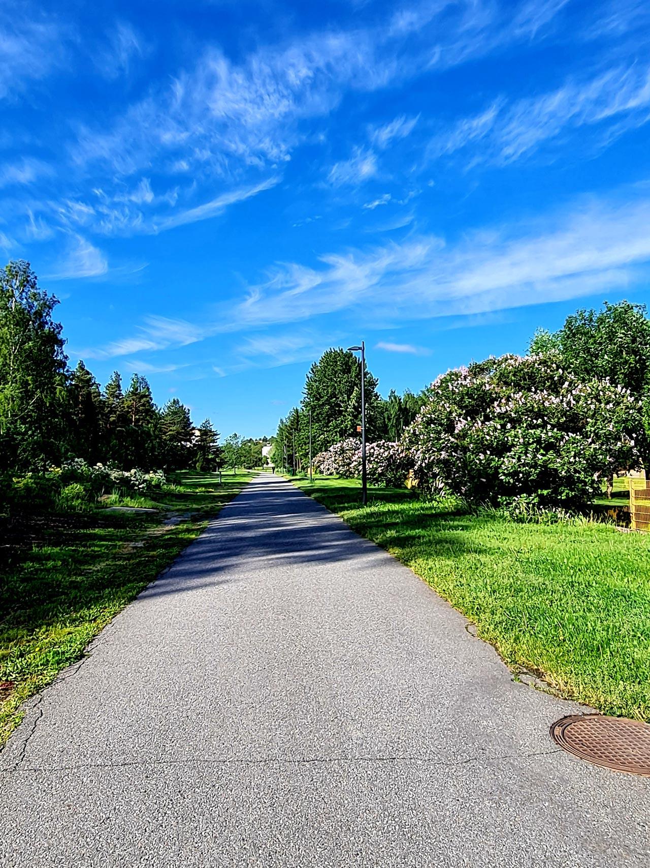 Armi Sarajärvi: Ylhäistenpuisto, puistot kaupungeissa lisäävät kestävää hyvinvointia.