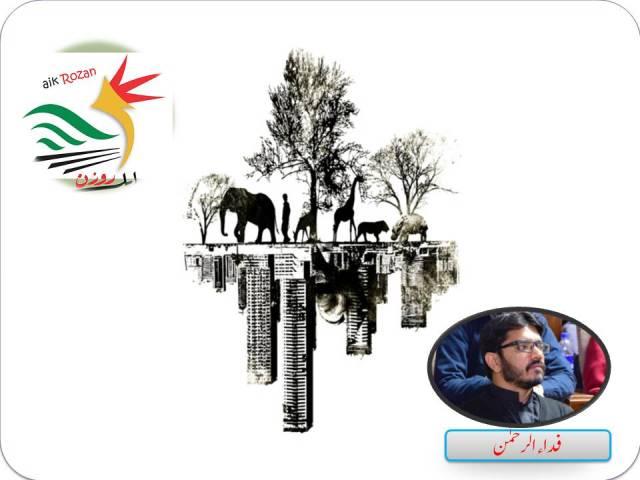 Fida ur Rehman