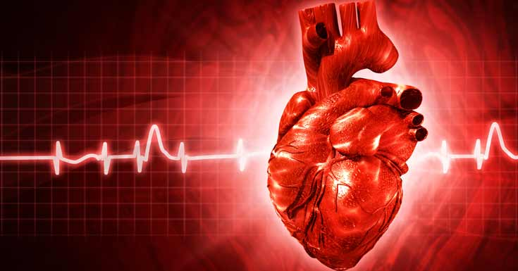 Photo of Tips to Reduce The Risk of Having A Heart Disease [4]