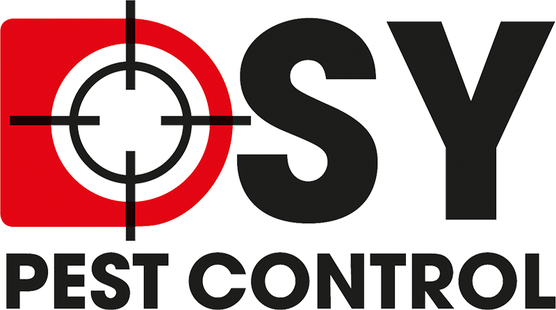 DSY Pest Control | Derbyshire and South Yorkshire Pest Control Services