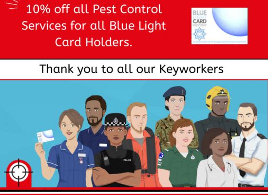 10% off pest control services Derbyshire