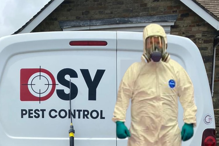 Pest control Chesterfield