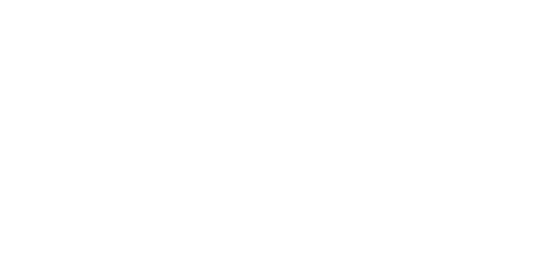 Next Chapter Logo in White