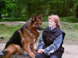 Picture of Jerry Lee GSD