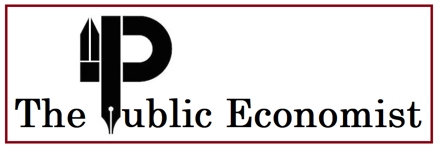 The Public Economist Cover