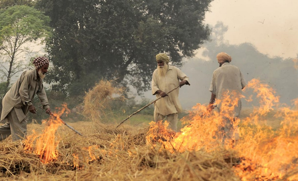 By CIAT - NP India burning 48Uploaded by mrjohncummings, CC BY-SA 2.0, https://commons.wikimedia.org/w/index.php?curid=30330151