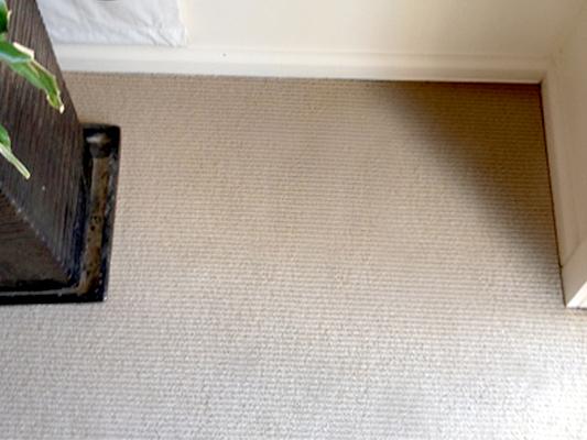 Carpet Water Damage Sydney