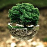 Nominations Open for the Most Prestigious Environmental Prize in History