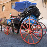 Rome Bans Horse-Drawn Carriages